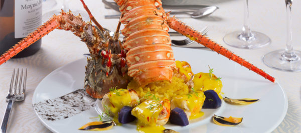 lobster_for_stand1920x850